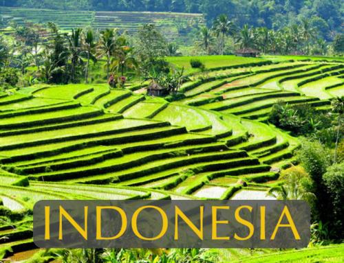 Bali's Hidden Nature