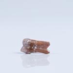 hobbits-tooth-photograph-kinez-riza-1