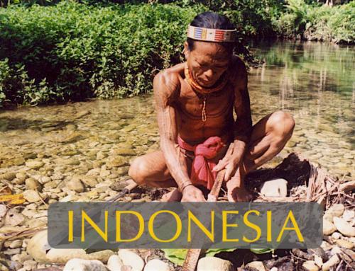 Mentawai Magic
